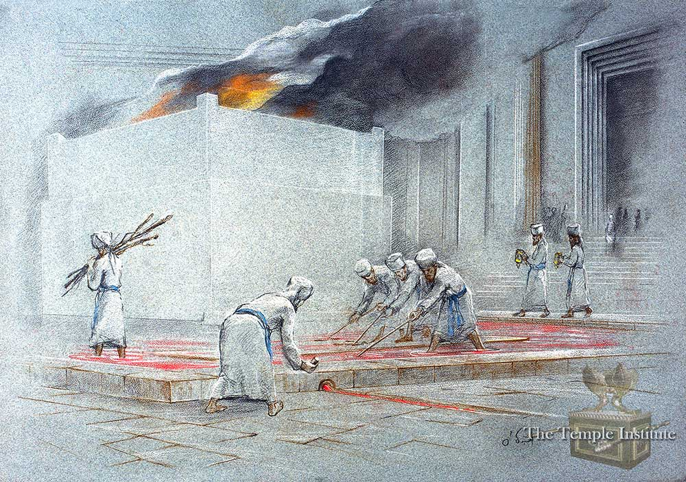 Kohanim clean the Temple courtyard