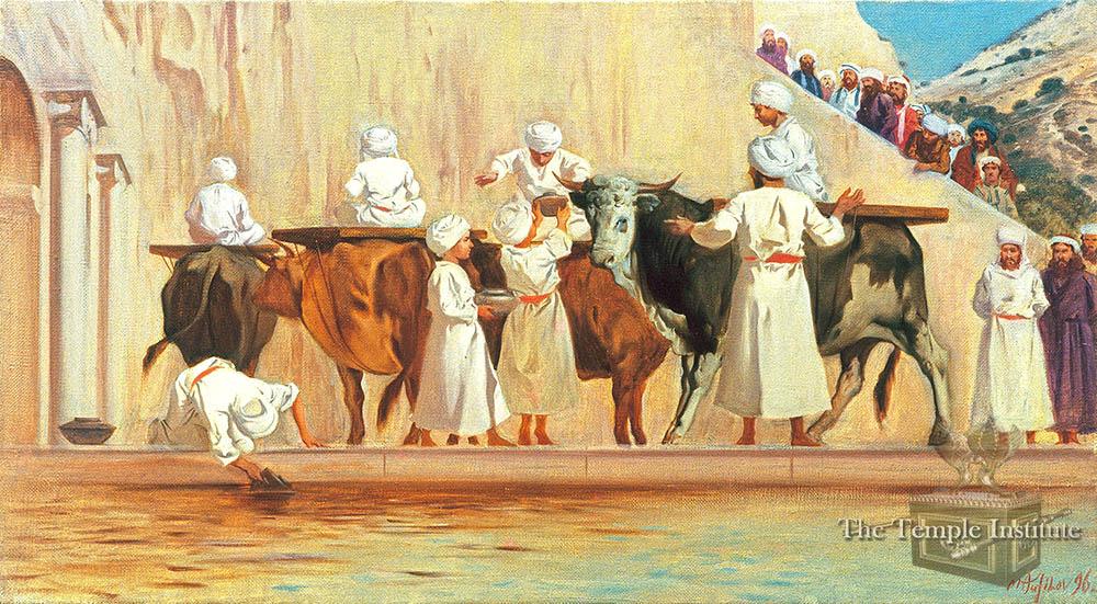 Gathering Water at Shiloach