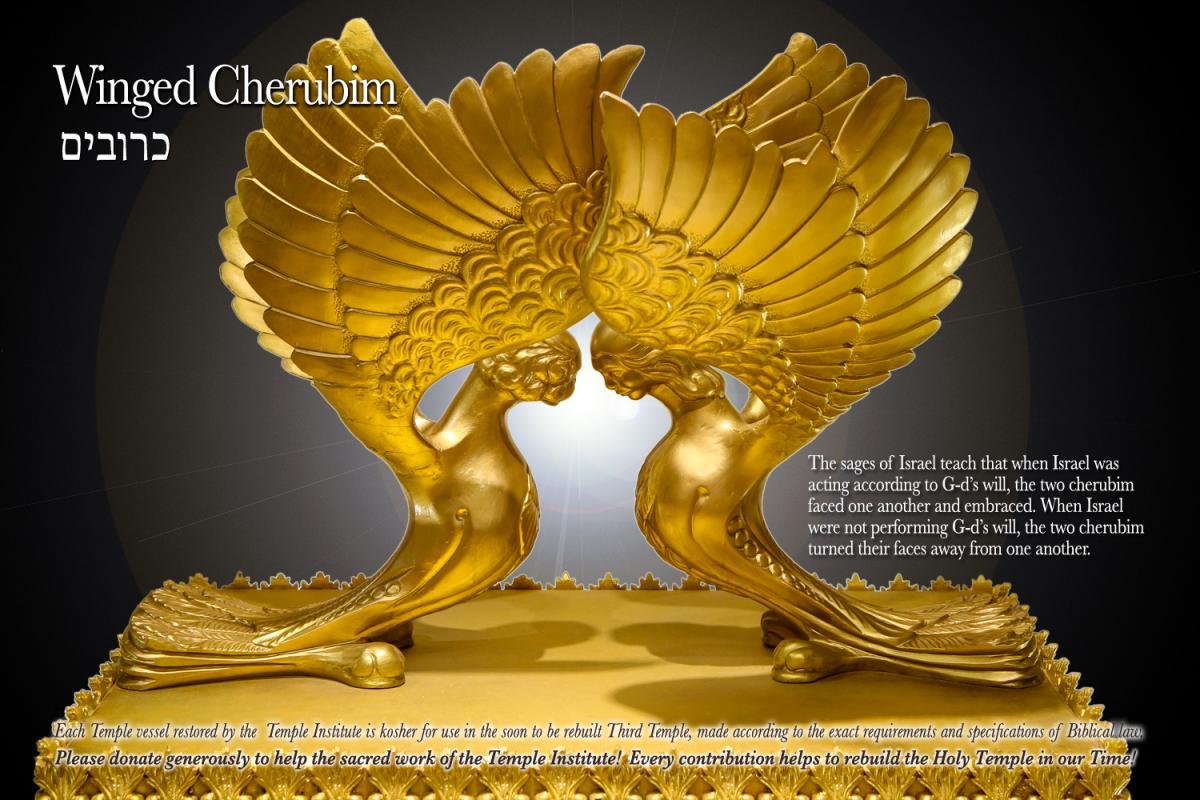 https://templeinstitute.org/wp-content/uploads/photo-gallery/cherubim-gallery.jpg?bwg=1583312192