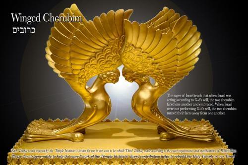 cherubim-gallery