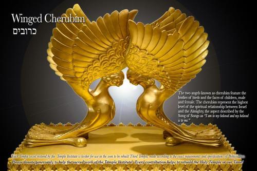 winged-cherubim-gallery